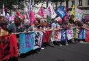 La loi sur la représentativité des organisations syndicales: Premier bilan